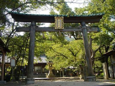kumanokodou025.jpg