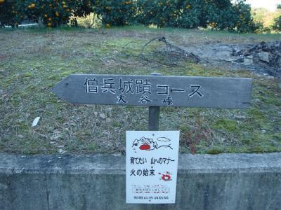 hoike-idakiso019.jpg