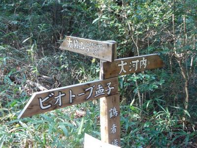 hoike-idakiso039.jpg