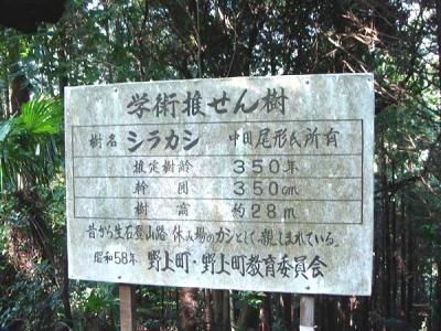 oisiyama026.jpg
