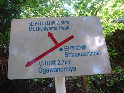 oisiyama030.jpg