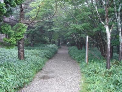 oodaigahara003.jpg