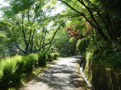 sugimurakouenn033.jpg
