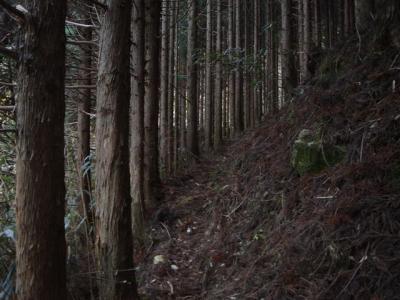 syakagatake009.jpg