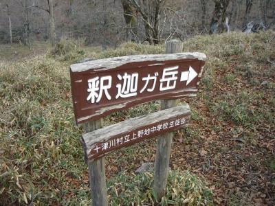 syakagatake036.jpg