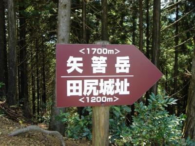 yahazudake024.jpg