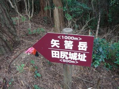 yahazudake036.jpg