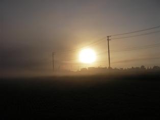 霧が出てきた・・・