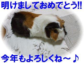 blog画像 002