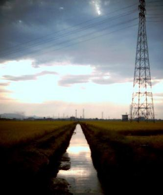 20091013004.jpg