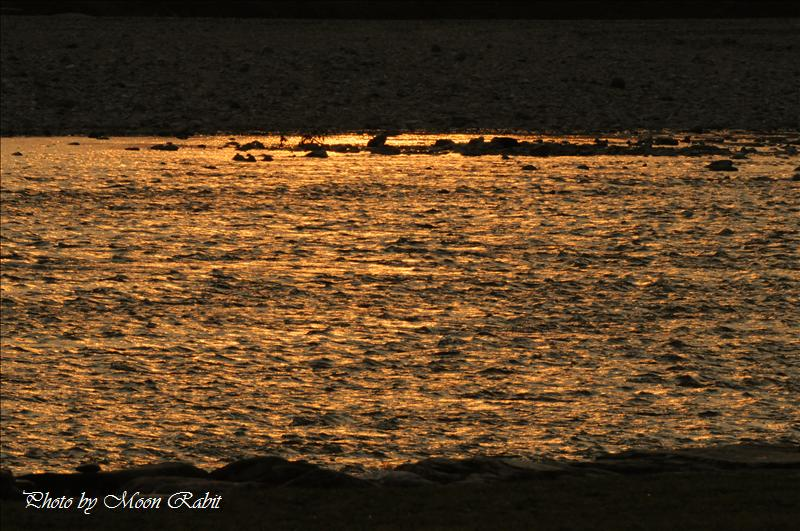 武丈公園周辺の夕暮れ 西条市加茂川河畔 2008.03.25