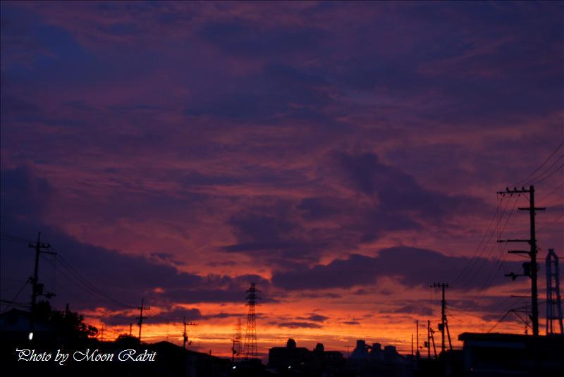 夕焼け 西条市北浜南・新堀上 2008.07.17