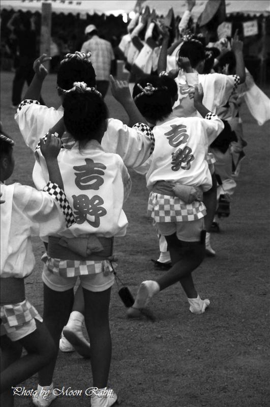 本谷温泉まつり その6 吉野連(よしのれん)の阿波踊り(あわおどり)(2) 西条市河之内 2008.08.24<br />2010年本谷温泉まつり(本谷温泉祭り)予定 西条市河之内 本谷公園 2010年8月29日