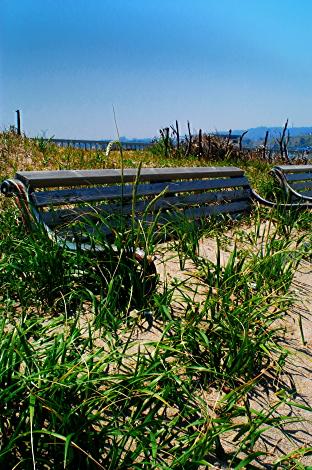 河原子港の砂に埋もれた椅子