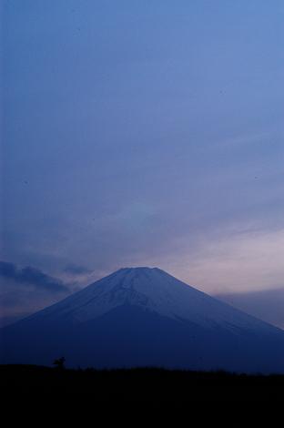 富士やーま