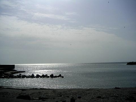20060415231151.jpg