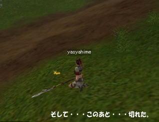 20051205-5.jpg