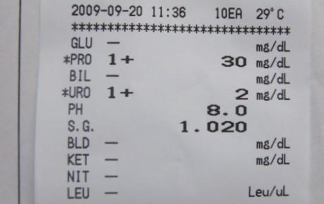 尿定性検査 結果表