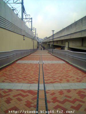20080303minakita1.jpg