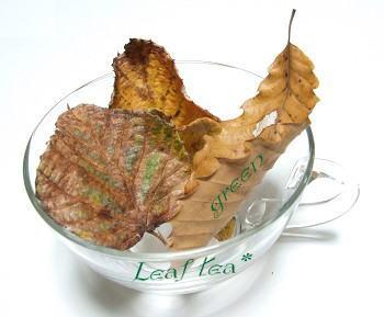 leafteag.jpg
