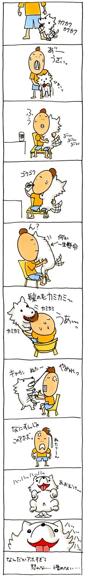 カミカミ犬