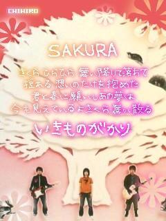 SAKURA歌詞画