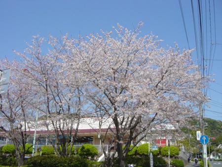 京急長沢駅前