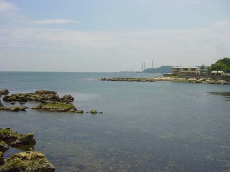 観音崎大橋から見た景色