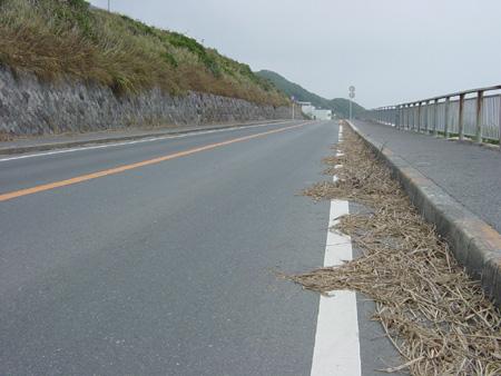 閑散とした道路