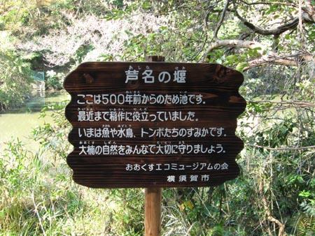 芦名の堰(あしなのせき)
