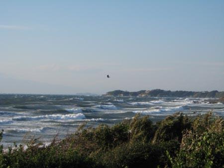 風が強い三戸浜