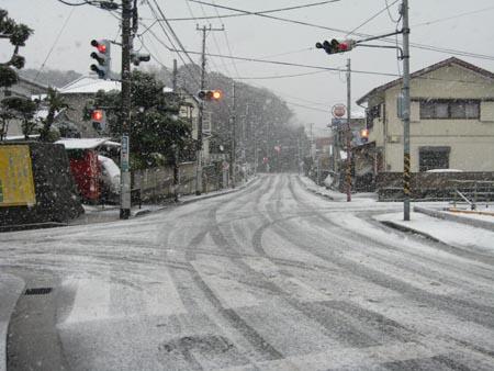 朝から雪です!