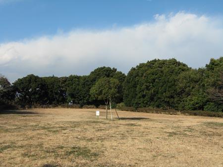 ピクニックの丘