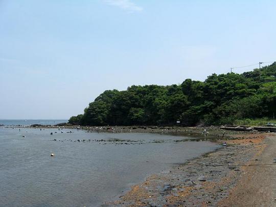 潮干狩り場