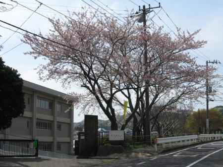 ikegami_es01.jpg