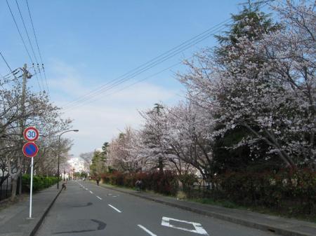 kurihama_es.jpg