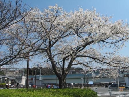 kurihama_sta.jpg