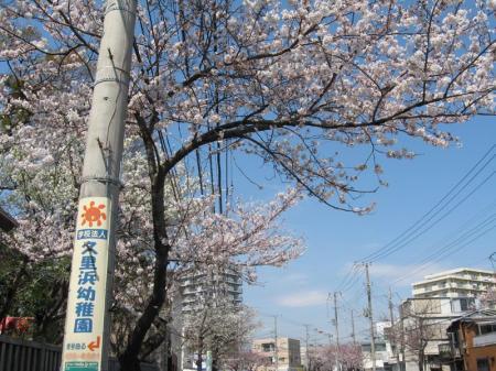 kurihama_tauraroad.jpg