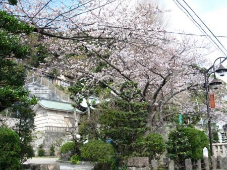 nishikanou.jpg