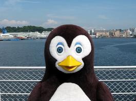 ペンギン!?