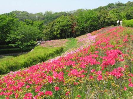 shou_koku043002.jpg