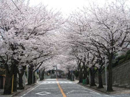takatori04.jpg