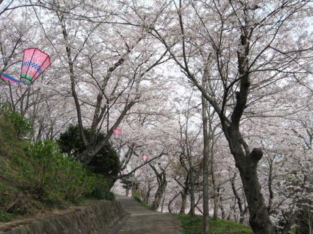 tsuka05.jpg