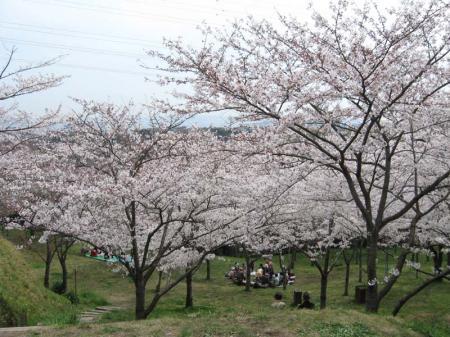 tsuka06.jpg