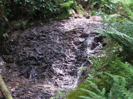 ゆるやかな滝