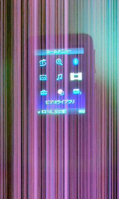 P1000252.jpg