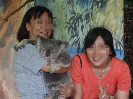 コアラ抱っこ5