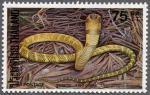 キングコブラ(タイ)
