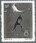 中国・恐竜