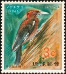 ノグチゲラ(琉球)
